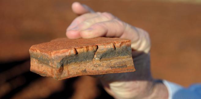 Koncerny górnicze Vale, Rio Tinto Group i BHP Billiton, które kontrolują dwie trzecie światowych dostaw rudy żelaza drogą morską, wydaja obecnie ok. 47 mld dolarów na nowe i większe kopalnie rudy