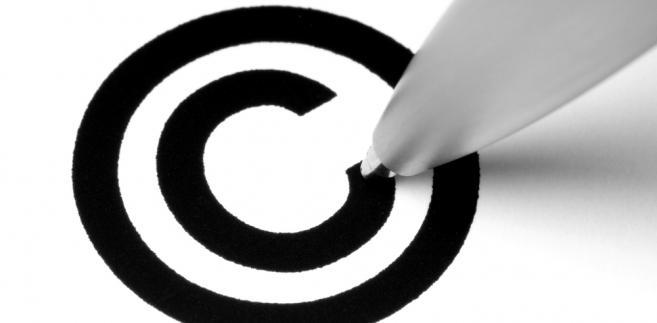 Trybunał podzielił stanowisko rzecznika generalnego, że cała konstrukcja rozporządzenia ma na celu ułatwianie przedłużania ochrony znaków towarowych i utrzymywania jej w mocy
