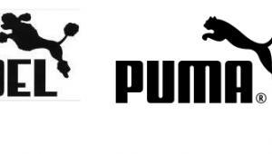 Pudel - Puma