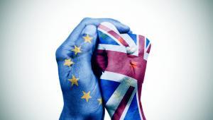 I choć na pierwszym miejscu jeżeli chodzi o liczbę studentów na brytyjskich uczelniach są Niemcy, Francuzi, Włosi i Grecy, to także z Polski zainteresowanie jest wysokie