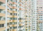 Rekordowy rok liderów rynku nieruchomości