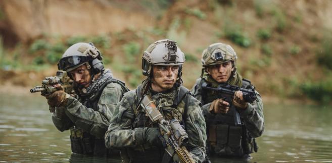 Aneksja Krymu, Państwo Islamskie, akty terroru... Jest klimat do dyskusji o współpracy w dziedzinie obronności