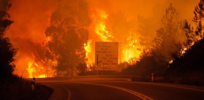 Obecnie w walce z żywiołem we wszystkich trzech dystryktach bierze udział ponad 1200 strażaków.