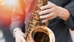 W cyklu Singer Jazz Festival zagrają m.in.: jazz band Młynarski-Masecki, Oleś Brothers & Theo Joergensmann, międzynarodowy kwintet Kennetha Dahla Knudsena, Theo Joergensmann i Sundial Trio, trio RGG wraz z finlandzkim trębaczem i kompozytorem Vernerim Pohjolą. Finał imprezy uświetni występ hiszpańskiego skrzypka pochodzenia ormiańskiego Ara Malikiana, który razem z zespołem muzyków wykona zarówno arcydzieła muzyki klasycznej, piosenki popularnych twórców współczesnych, jak również własne utwory.