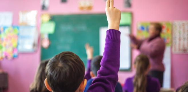 Polska praktyka dydaktyczna odbiega od światowej. Uczniowie rzadziej niż ich rówieśnicy z innych państw czytają na lekcjach teksty popularnonaukowe, ale także użytkowe, jak prasa, ulotki albo powieści