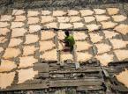 Garbarnie w Indiach: Jaki jest prawdziwy koszt skórzanych butów
