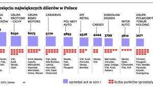 Dziesięciu największych dilerów w Polsce
