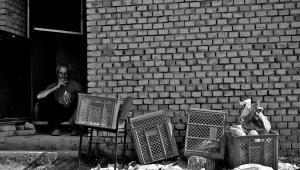 Niechciani z ciglanej / fot. Magdalena Chodownik