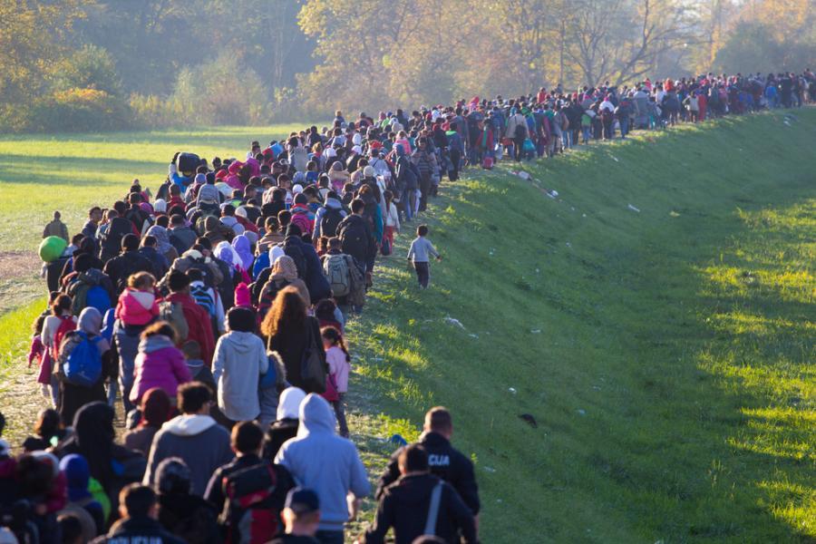 imigranci, uchodźcy