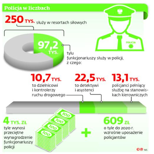Policja w liczbach