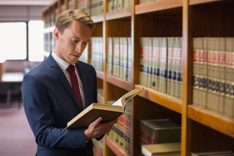 prawnik prawo