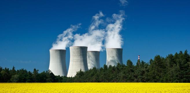 Jak mówił Sobolewski na posiedzeniu poselskiego Zespołu ds. Energetyki Jądrowej, w ministerstwie dokonano analizy różnych struktur właścicielskich.