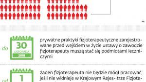 Fizjoterapeuci w liczbach