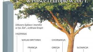 Sieć Natura 2000 w Polsce i Europie w 2017 r.