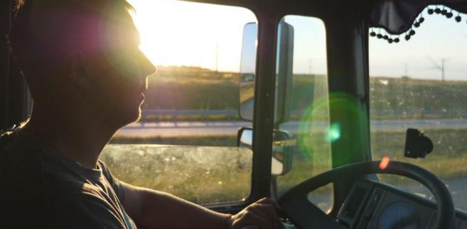 W ocenie skutków regulacji projektodawca przyznał, że nie jest w stanie określić, o ile więcej pieniędzy uda się komornikom wyegzekwować od dłużników alimentacyjnych pracujących w transporcie. W praktyce sytuacja osób oczekujących na alimenty wcale nie musi się znacząco poprawić. Co prawda w przypadku kierowcy większość pensji stanowią inne świadczenia, ale diety z tytułu podróży służbowych są tylko jednym z nich.