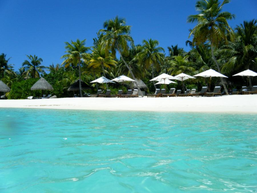 Plaża na Malediwach Fot.flickr/Sarah_Ackerman