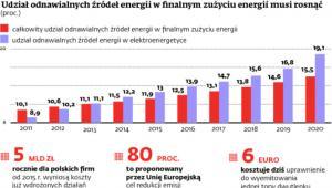 Udział odnawialnych źródeł energii w finalnym zużyciu energii musi rosnąć