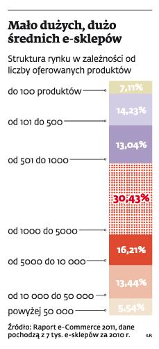 Mało dużych, dużo średnich e-sklepów