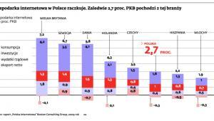 Gospodarka internetowa w Polsce raczkuje. Zaledwie 2,7 proc. PKB pochodzi z tej branży