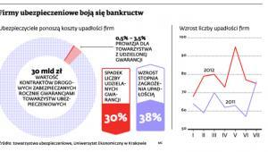 Firmy ubezpieczeniowe boją się bankructwa